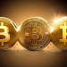 bitcoin trading should be ready to face everything